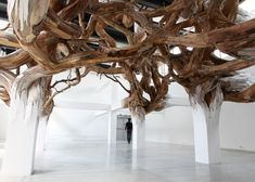"""Baitogogo"", a twisted entanglement of tree branches that appears to grow organically from the beams, by brazillian artist Henrique de Oliveira - Palais de Tokyo, Paris."