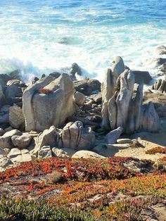 Carmel California: A top destination city in the US. Find things to do, get secret tips and discounts - written by locals who love Carmel - ILoveCarmelCA Stuff To Do, Things To Do, Carmel California, Carmel By The Sea, Top Destinations, Big Sur, Mount Rushmore, River, Mountains