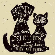 cat quote - Google zoeken