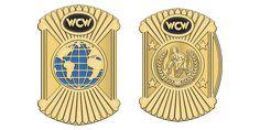 Gold Belts, Professional Wrestling, Wwe, Lucha Libre