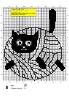 Katze / cat