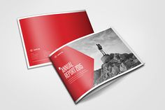 Annual Report 2015  by Braxas Mora, via Behance