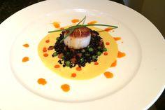 Seared scallop appetizer - Bellatrix Restaurant on the Classic Club golf course - Palm Desert, CA
