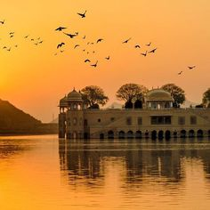 Water Palace at sunrise Rajasthan Jaipur. India ,The Water Palace at sunrise Rajasthan Jaipur. Fairmont Jaipur, Holi, Udaipur, Jaipur India, North India, India Tour, Tourist Places, India Travel, Vacation Spots