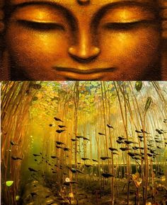Symbiotic is Sympathy!  Let work and live together here on planet Earth _/_ http://What-Buddha-Said.net/drops/IV/Symbiotic_Sympathy.htm