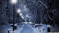 parc en hiver
