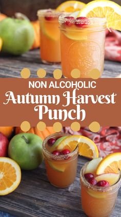 Thanksgiving Punch | Holiday Cocktail or Mocktail