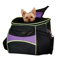 "K&h Pet Products Comfy Go Backpack Carrier Purple/Black/Lime Green 15 x 11.5"" x 14"", Black Purple"