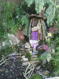Fairy garden in a wheelbarrow!