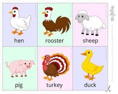 ▷ ANIMALES EN INGLÉS | Vocabulario + Ejercicios + Flashcards Zoo Preschool, Preschool Activities, English Activities For Kids, Sheep Pig, Kids English, Toddler Learning, Phonics, Farm Animals, Vocabulary