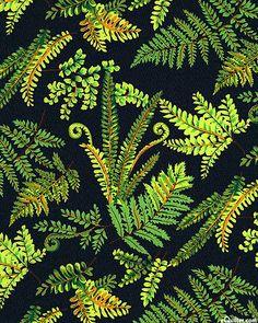 New Zealand Quilting Fabrics. Cushla's Village Fabrics, New Zealand Quilting Fabric, Kitsets and Patterns. Motifs Textiles, Textile Patterns, Navy Background, Background Patterns, Kiwiana, Cotton Quilting Fabric, Fauna, Gravure, Illustrations