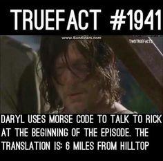 The Walking Dead Facts Walking Dead Facts, Walking Dead Funny, Fear The Walking Dead, Twd Memes, Funny Memes, Dead Zombie, Dead Inside, True Facts, Dead Man