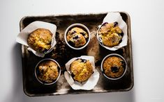 jordan marsh's blueberry muffins | i am a food blog