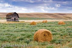 Ethan Meleg, a saskatchewan photographer. Has really managed to capture the beauty of this province!