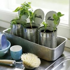 Herbs in tin cans.  I have been takng the lids off but I kind of like this idea.