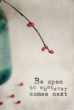 Be open to whatever comes next. #wisdom #affirmations / Insight <3