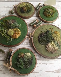Moss embroidery by E
