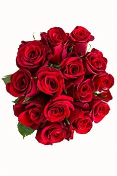 36 Stems - Fresh Cut Red Rose Bouquet from Flower Explosion *** Click image for more details.