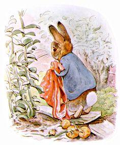 beatrix potter illustrations   Beatrix Potter