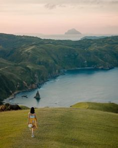 Nightlife travel Philippines travel batanes, Phil… – Famous Last Words Bohol, Palawan, Batanes, Cebu Philippines Travel, Vigan Philippines, Siargao, Travel Hotel, Nightlife Travel, Philippines