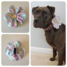 Spring Flower Accessory for Pet Collars could defiantly see Ariel in one of these.