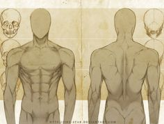 +MALE ANATOMY: FRONT + BACK STUDY+ by jinx-star.deviantart.com on @DeviantArt