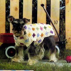 PAID pattern on Etsy. Vintage Crochet Granny Square Dog Sweater by alittleyarnshop Knitted Dog Sweater Pattern, Baby Sweater Patterns, Crochet Coat, Crochet Granny, Vintage Knitting, Vintage Crochet, Dog Sweaters, Dog Coats, Crochet Animals