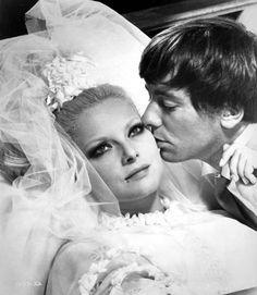 """Virna Lisi e Peter McEnery in """"Meglio Vedova"""" (1968)"""