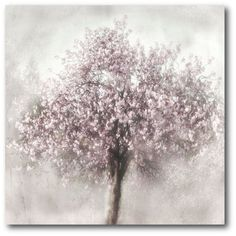 Sure to bring eye-catching charm to any room, this Artissimo Designs Blossoms of Spring II tree canvas wall art is a must-have for your home. Tree Canvas, Canvas Frame, Canvas Wall Art, Canvas Prints, Canvas Canvas, Canvas Size, Oversized Wall Art, Fall Mantel Decorations, Tree Designs