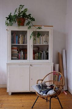 cabinet + plant