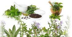 6 najzdravších a rokmi osvedčených receptov našich starých mám, ktoré skutočne zaberajú. - Báječný lekár