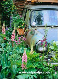 Mini Cooper Garden ~ Love it...