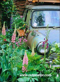 Mini Cooper Garden