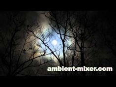 Scary sounds from a night in the wild Halloween Sounds, Scary Sounds, Horror Sounds, Darkest Dungeon, Video Background, Samhain, Favorite Holiday, Creepy, Musica