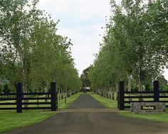 Navigate to this web site Acreage Landscaping Ideas Driveway Entrance Landscaping, Driveway Fence, Acreage Landscaping, Tree Lined Driveway, Driveway Design, Landscaping Ideas, Farm Gate, Farm Fence, Front Gates