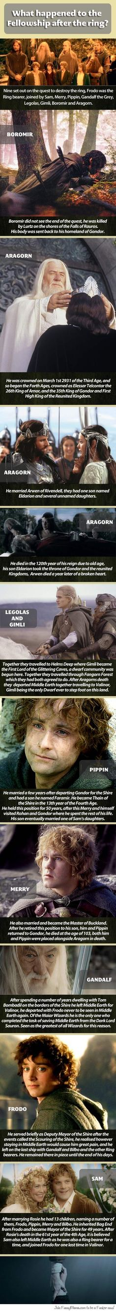What happened to The Fellowship after the ring...