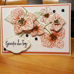 Dorothea Winkler: Hier zeige ich euch eine Karte, die ich mit dem Produktpaket Orchideenzweig gefertigt habe. Ich bin verliebt!