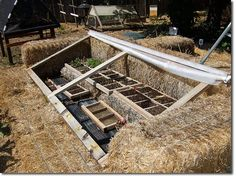 Planning Our Organic Market Garden Permaculture Forums, Permaculture Courses, Permaculture Information & News