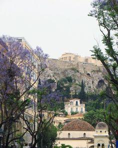 Τα πανέμορφα μωβ δέντρα που στολίζουν έναν από τους ομορφότερους πεζόδρομους στο κέντρο της Αθήνας Acropolis, Paris Skyline, Jacaranda Trees, Grand Canyon, Greece, To Go, Travel, Colors, Greece Country