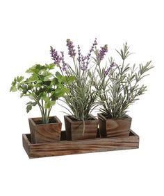 Whether a green thumb comes naturally matters naught with these potted herbs. This low-maintenance plot of greenery looks convincingly real and doesn't require a single drop of water. 8'' W x 11.5'' HWood / plastic / fabric / foamImported