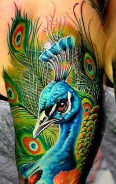 3D Peacock Tattoo - 55  Peacock Tattoo Designs  <3 <3