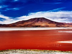 In southern Bolivia, lakes are red as blood, clear as the sky, and covered with glittering white salt. Andrew Marantz travels to an otherworldly land where nature is still allowed to play by its own rules.