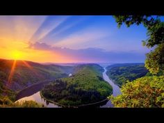 Una Paloma Acordionis (VOL. 1) 1 hour awesome compilation album with playlist - YouTube