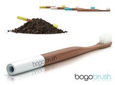 1-BogoBrush-Brosse-Dents-Biodegradable-Bambou