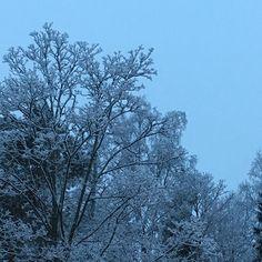 Niin kaunis sunnuntaiaamu! Aamun pimeys on taittunut siniseen. Yöllä satanut lumi on muuttanut maiseman pumpuliksi. Riisipuuro porisee koti on siivottu jouluvalot ja kynttilät loistavat. Ihanaa sunnuntaita kaikille! #sininenhetki #bluemoment #espoo #finland #snow #suomi #joulukuu