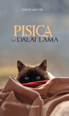 Get a cat's eye view of a day in the life of His Holiness The Dalai Lama in this delightful book by David Michie. A purrrrrrrrrrfect read for all cat lovers! Dalai Lama, Got Books, Books To Read, Finding Happiness, Thing 1, New Delhi, Love Book, David, Writing A Book