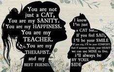 Crazy Cat Lady, Crazy Cats, Cute Cats, Funny Cats, Cat Room, All About Cats, Cat Quotes, Beautiful Cats, Cat Life