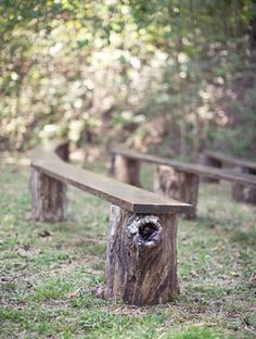 Old World Carnival Wedding: Erin + Brent Stump benches for the wedding ceremony. Field Wedding, Yard Wedding, Outside Wedding, Wedding Bonfire, Bush Wedding, Woodland Wedding, Rustic Wedding, Forest Wedding, Trendy Wedding