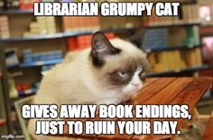 Librarian Grumpy Cat gives away book endings, just to ruin your day.