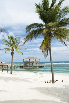 Thinking of planning a destination wedding? Our destination wedding guide has everything you need to plan your big day. Find the perfect wedding location and venue, and find expert destination wedding planning advice before you walk down the aisle. Top 10 Honeymoon Destinations, Destination Wedding, Wedding Planning, Wedding Locations, Summer Vibes, Big Day, Perfect Wedding, Caribbean, Beautiful Places